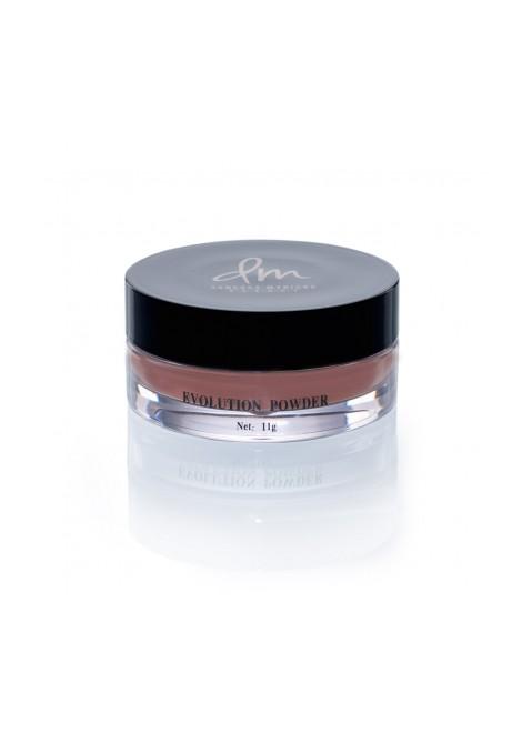 Danessa MyRicks Beauty Evolution Powder